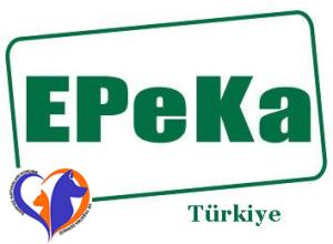 EPEKA & Sahipsiz Hayvanlar.fw